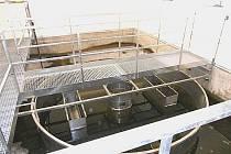 Část technologie čistírny odpadních vod ve Starém Vestci.