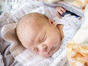 JÁCHYM NOVOTNÝ se narodil 1. prosince 2018 v 10.48 hodin s délkou 51 cm a vážil 4 070g. Pro manžele Kateřinu a Radka byl chlapec překvapením. Doma v Nymburce se na brášku těšily sestřičky Kristýnka a Simonka.