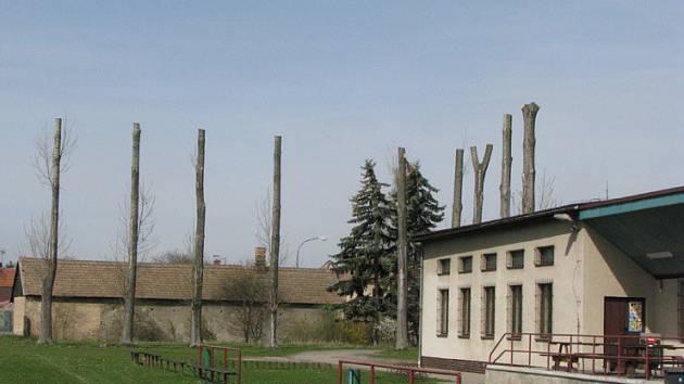Kolem hřiště v Odřepsích zůstaly z topolů jen pahýly