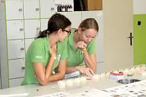 Projektový den na Střední zdravotnické škole v Nymburce.