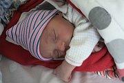 ROZÁLIE PAUEROVÁ se narodila 27. října 2018 ve 14.56 hodin s délkou 48 cm a váhou 3 040g. Rodiče Kristýna a David z Jírn se na holčičku předem těšili. Doma na ní čekají sourozenci Jůlie, Josefína a Vilém.