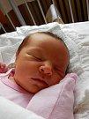 PANENKA MAJDALENKA. Magdaléna PETROVÁ se narodila 11. září 2015 v 9.50 hodin. Holčička vážila 3 310 g a měřila 48 cm. Je zatím prvním miminkem maminky Andrey a táty Radka a všichni budou bydlet v Poděbradech.