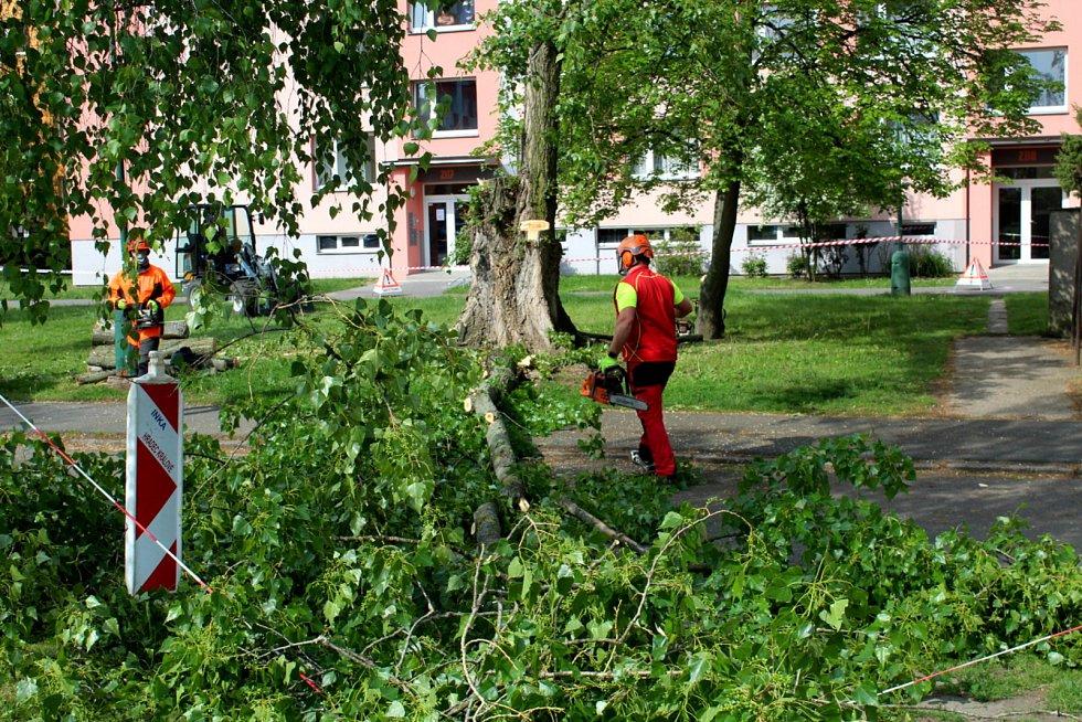 V pátek dopoledne byl na jankovickém sídlišti pokácen letitý topol.