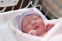 VIVI, DÁREK TÁTOVI K SVÁTKU. VIVIEN ŠŤASTNÁ se narodila 29. června 2017 v 13.07 hodin s mírami 3 480 g a 49 cm. Bude doma v Nymburce u rodičů Martiny a Petra a sestry Justýnky (14).