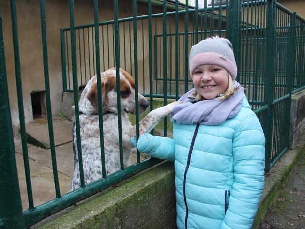 Štědrý den v útulky pro opuštěné pejsky v Lysé nad Labem