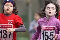 Běh lipovou alejí - ilustrační foto.