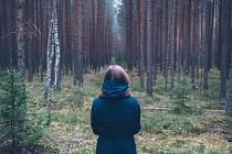 Už na vás někdy promluvily stromy? Nyní máte možnost poslechnout si jejich příběhy.