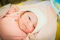 Natálie Borecká, Sadská. Narodila se 17. února 2020 ve 12.28 hodin, vážila 3 730g a měřila 51 cm. Na chlapce se těšili rodiče Adriána a Stanislav a malý Samuel (2,5 roku).