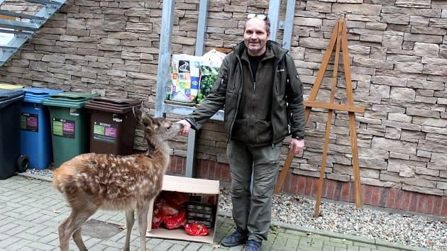 Nadílku dárků pro zvířátka na Huslíku přišel zkontrolovat i malý jelen.