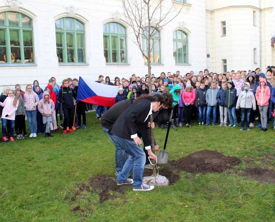 U Gymnázia Bohumila Hrabala roste od pondělí 22. října Lípa republiky.
