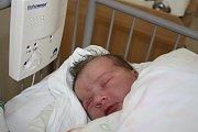 O MONIČCE SE VĚDĚLO. MONIKA ŠKALOUDOVÁ přišla na svět 22. února 2017 v 21.34 hodin s mírami 3 870 g a 50 cm.  Malá slečna má  v Koutech rodiče Moniku a Zdeňka a sestry Amálku (4) a Žanetku (2).