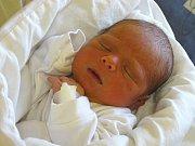 MATYÁŠ BISTRIANSKÝ se narodil 19. března 2018 ve 20.37 hodin s délkou 47 cm a váhou 2 960 g. Doma v Lysé nad Labem se na chlapečka předem těšili rodiče Igor a Michaela a čtyřletá Adélka.
