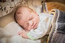 Stela Šimůnková, Vrchlabí. Narodila se 17. června 2020 ve 14.00 hodin, vážila 3 790 g a měřila 52 cm. Z prvorozené holčičky se raduje maminka Kristina a tatínek Šimon.