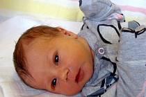 NA THEU SE TĚŠÍ STELLINKA. Thea Zdobinská se Jakubovi a Stáně narodila 10. listopadu 2017 ve 4.18 hodin, kdy měřila 49 cm a vážila 3 270 g. Doma v Choťánkách se na sestřičku těšila Stellinka.