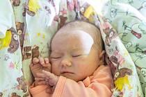 Viktorie Bláhová se narodila v nymburské porodnici 29. září 2021 v 17.17 hodin s váhou 3320 g a mírou 47 cm. Z prvorozené holčičky se v Nymburce raduje maminka Eva a tatínek Václav.
