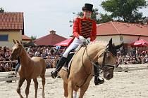 Koně tančili pro Kapku naděje v Hradištku
