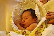 LAURA JE Z MILOVIC. Laura PROKOŠOVÁ přišla na svět 1.listopadu 2015 v 9.22 hodin. Vážila 3 230 g a měřila 47 cm. Rodiče Petra a Tomáš vybrali svému prvnímu miminku jméno napůl české a napůl slovenské.