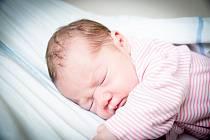 Natálie Stehlíková, Nymburk Narodila se 19. října 2020 v 18.24 hodin s váhou 2 770g a mírou 44 cm. Z prvorozené holčičky se radujemaminka Denisa a tatínek Radek.