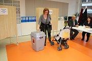 Volby v Milovicích