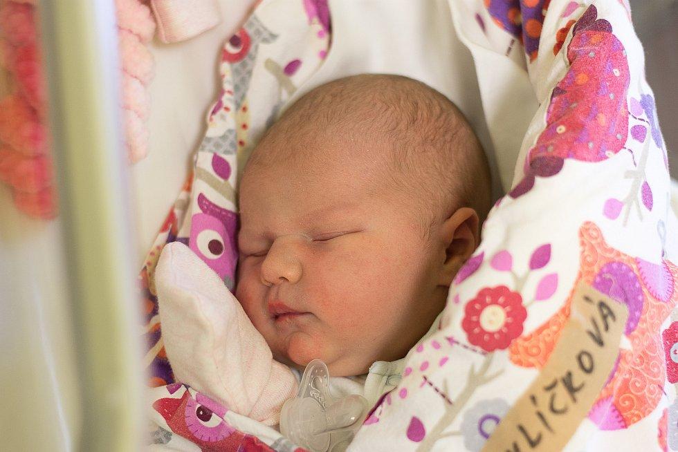 Edita Havlíčková se narodila v nymburské porodnici 25. listopadu 2020 v 19.32 hodin s váhou 4020 g a mírou 49 cm. V Cerhenicích ji přivítal bráška Rostislav (1,5 let) s maminkou Veronikou a tatínkem Martinem.