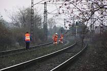 Úsek trati mezi Libicí nad Cidlinou a Choťánkami, kde vběhlo šest koní pod vlak.