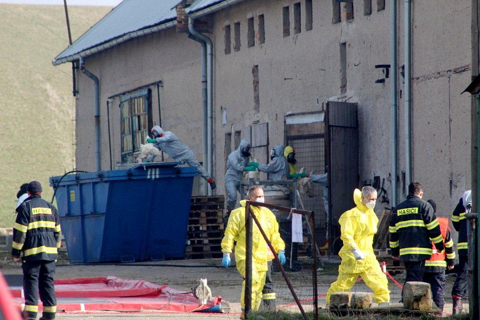 Likvidace kachního chovu kvůli ptačí chřipce v obci Vinice v severovýchodním cípu Nymburska.