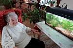 Klienti domova pro seniory o sobě mohou informovat i tímto způsobem.