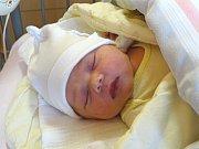 ADÉLKA DVORSKÁ se narodila 8. ledna 2018 ve 22.17 hodin s výškou 49 cm a váhou 3 330g. Prvorozená a slíbená holčička je doma v Milovicích s rodiči Pavolem a Jitkou.