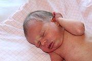 O MADLENCE SE VĚDĚLO. MADELEINE MRÁZKOVÁ se narodila 16. června 2017 v 22.11 hodin s mírami 2 590 g a 46 cm. Rodiče Anna a Marian si dcerku odvezli domů do Nymburka. Tam už je dětí jako smetí: Verunka (8), Zuzanka (6) a Sebastian (2,5).