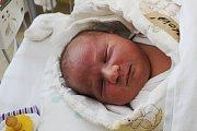 TEREZA TREJBALOVÁ se narodila 14. února 2018 ve 7.14 hodin s výškou 50 cm a váhou 4 080 g. Z holčičky se radují rodiče Monika a Vladimír, stejně jako tříletý bráška Marek. Bydlet budou v Kovanicích.