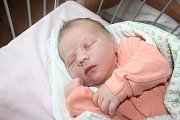 PATRICIE JE NOVOU SESTROU MATYÁŠE. Patricie Bendová se narodila do rodiny Leony a Michala z Poděbrad 7. října 2013 pět minut po jedné hodině. Vážila 3 930 g a měřila 51 cm. Doma se na svou novou sestřičku těšil čtyřletý Matyáš.