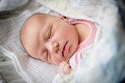 TEREZA PĚCHOUČKOVÁ  se narodila 8. prosince 2018 vE 12.36 hodin s délkou 46 cm a váhou 3 350g. Rodiče Lenka a Jan si prvorozenou holčičku odvezli domů do Bašic.