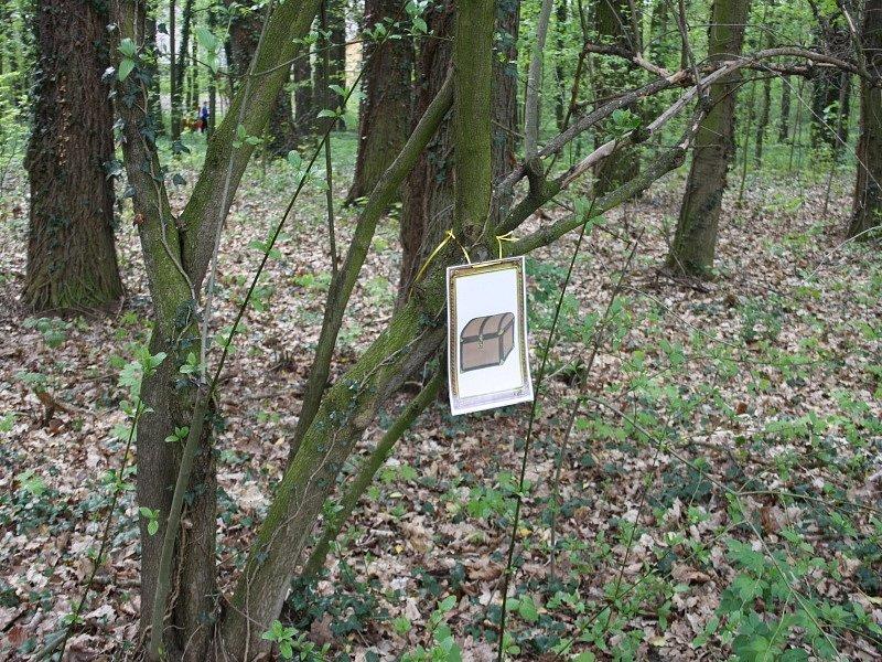 Čarodějnický pohádkový les na Ostrově v Nymburce