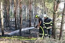 Požár lesíka a louky u D11