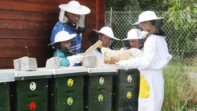 Děti se na příměstském táboře v Poděbradech učí včelařit.