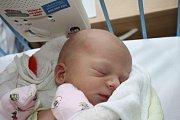 SEBI JE TU! Sebastian REK je klouček narozený 15. ledna 2017 23 minut před půlnocí. Jeho míry byly 2 950 g a 48 cm. Rodičům Michaele a Petrovi z Milovic tak přibyl k Péťovi (1,5) druhý synek.