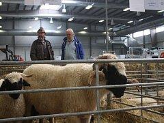 Na výstavišti v Lysé jsou oblíbené výstavy zemědělec a Náš chov