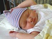 MELISSA MARIA BUGA se narodila 1. března 2018 v 8.17 hodin s délkou 48 cm a váhou 3 120 g. Z dcery se radují rodiče Gigi a Aurelia z Lysé nad Labem, kteří pochází z Rumunska a Moldávie.