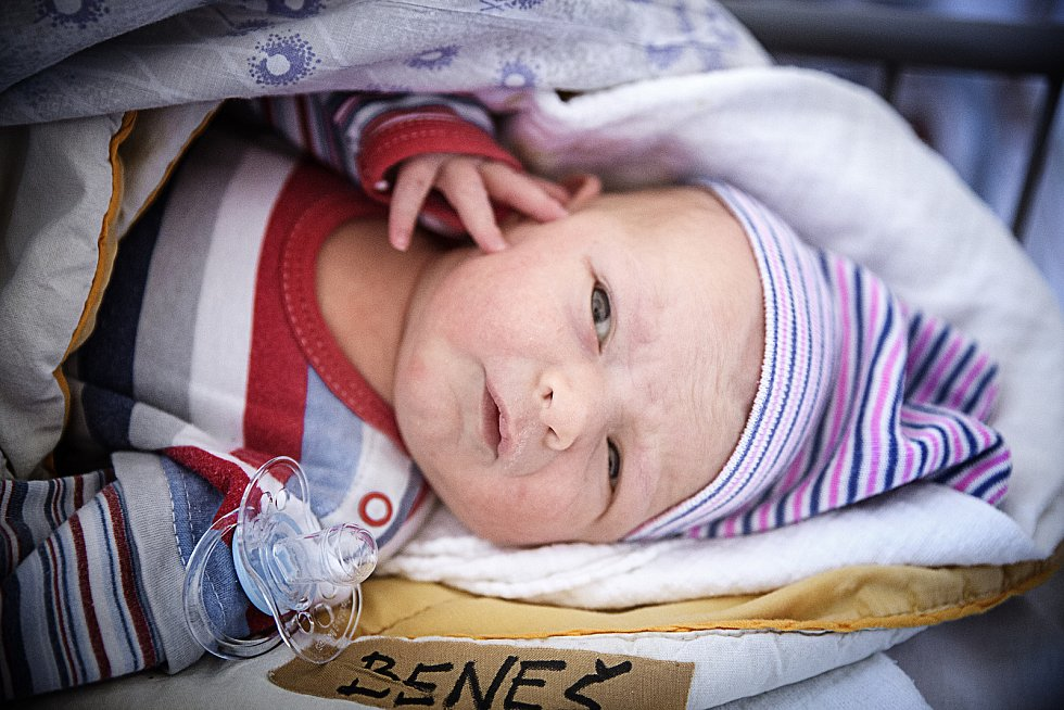 ADAM BENEŠ se narodil 12. února 2019 v 8.36 hodin s mírami 50 cm a 3 500g. Pro maminku Lenku a tatínka Michala je chlapeček již třetím přírůstkem do rodiny. Doma ve Chlebích se z bratříčka raduje Vítek (8 let) a Natálka (4,5 let).