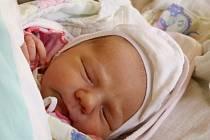 Johanka je silvestrovské miminko a poslední nymburské roku 2012.