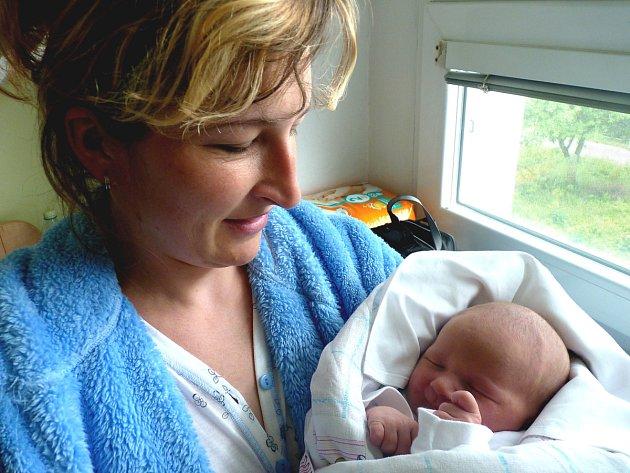 LEONTÝNKA JE NOVÁ SESTŘIČKA PAVLÍNKY. Leontýna Doležalová se narodila 12. června 2012 v kolínské porodnici. Po porodu měřila 50 centimetrů a vážila 3 670 gramů. S maminkou Pavlínou a tatínkem Petrem odjela za osmnáctiměsíční Pavlínkou do Velkých Výklek.
