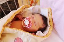 ANNA HANAH MÁ HEBREJSKÉ JMÉNO. Anna HannaH Ščípová se narodila rodičům Haně a Alfrédovi z Jíkve 30. září 2017 ve 21.17 hodin. Holčička měla míry 3 770 g a 51 cm. Rodinka měla dopředu jasno, že k nim přibude holčička.