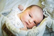 Jan Kudrle, Praha. Narodil se 30. července 2019 v 13.37 hodin, vážil 3 540g a měřil 49 cm. Chlapec se narodil do rodiny Dominiky, Františka a malé Marie (2,5 roku).