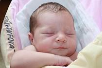 PRINCEZNA MARUŠKA. Marie FRŰHAUFOVÁ se narodila mamince Michaele a tátovi Davidovi 29. května 2015 v 16.42 hodin. Vážila 3 530 g a měřila 47 cm.  Na prvorozené miminko se v Čelákovicích, a nejen tam, těší babičky, dědové a vůbec všichni.