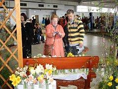 Výstavy Elegance a Narcis na lyském výstavišti
