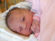 ADÉLKA ŠLECHTOVÁ  se narodila 9. ledna 2018 v 5.38 hodin s výškou 48 cm a váhou 3000 g.  Bydlí v Poděbradech s rodiči Jiřím a Ivanou a sestřičkou Nikolkou (3).