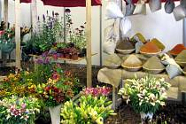 Výstava Květy nabídne jako tradičně barevné aranže.