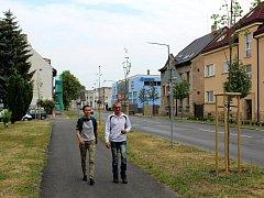 Nová lipová alej je vysazena i na Poděbradské ulici.