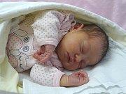 HANA PROCHÁZKOVÁ se narodila 20. března 2018 v 10.45 hodin s délkou 49 cm a váhou 3 300 g. Rodiče Pavel a Jana a jedenáctiletý bráška Matěj z Lysé nad Labem se na holčičku dopředu těšili.