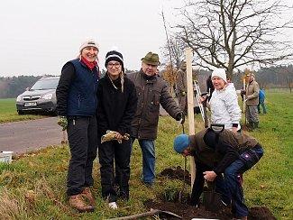 Nové stromky zasadili dobrovolníci podél staré obchodní cesty u Opolan.